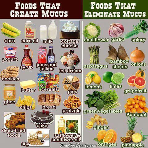 aliments eliminar mocs